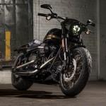 New Harley-Davidson Models Debut