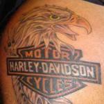 Harley-Davidson Rethinks Macho Image