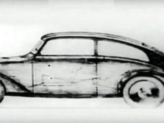 The Lovable Beetle - Documentary
